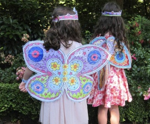 Colour In Fairy Wings